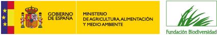 logo web color