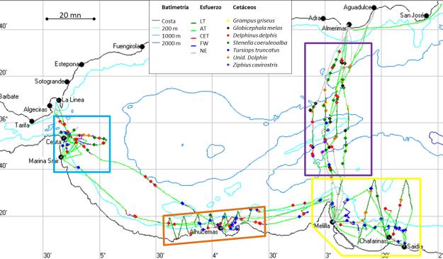 Recorrido de la embarcación Else y avistamientos de cetáceos durante las dos campañas Cetasur. Esfuerzo: CET=transecto aleatorio en busca de cetáceos, AT=transecto aleatorio en busca de cetáceos y aves marinas, LT=transecto lineal en busca de cetáceos y aves marinas, FW=seguimiento de cetáceos, NE=sin esfuerzo.